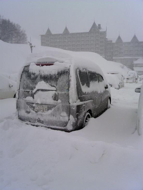 大雪|白馬コルチナスキー場のクチコミ画像