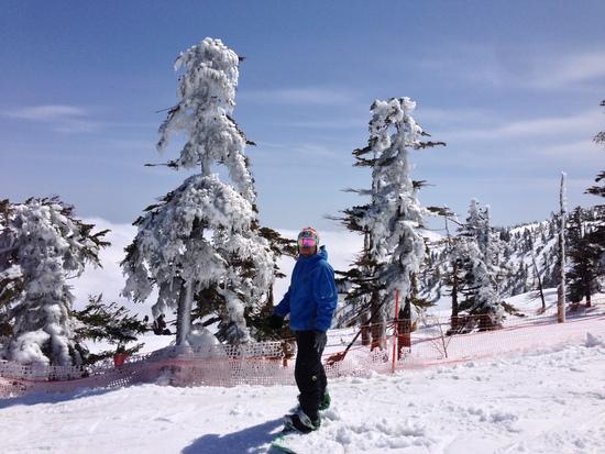 季節はずれのパウダー!|かぐらスキー場のクチコミ画像
