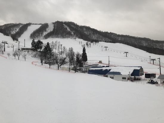 安心感あり|飛騨ほおのき平スキー場のクチコミ画像