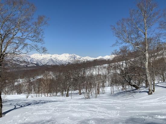 春スキー|たんばらスキーパークのクチコミ画像2