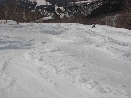 イルュージョンBコース|スキージャム勝山のクチコミ画像
