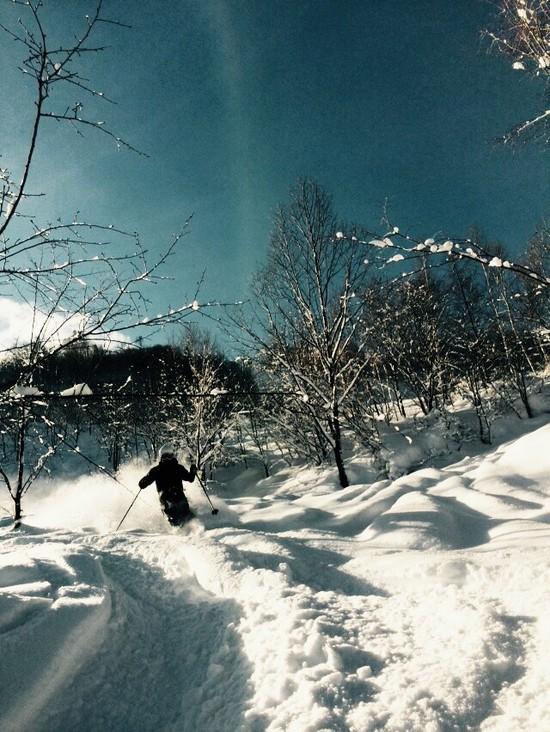 Powder trip 飛騨ほおのき平スキー場のクチコミ画像2