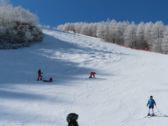 昔からのスキー場|やぶはら高原スキー場のクチコミ画像
