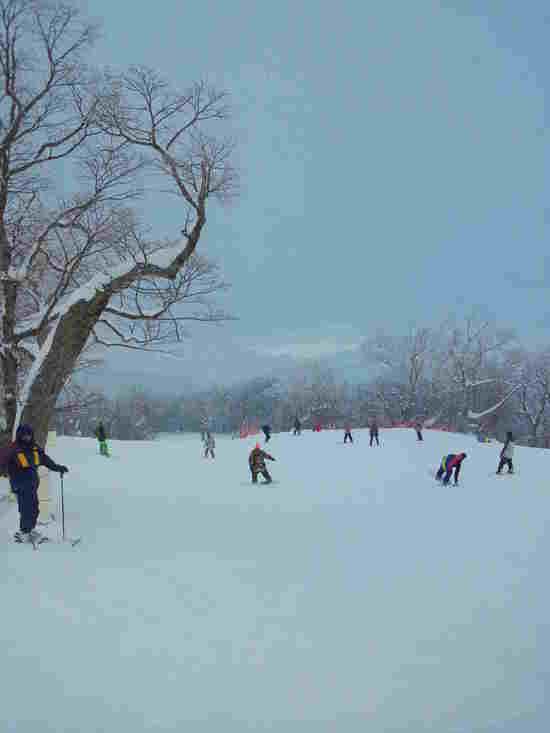 初めいほう|めいほうスキー場のクチコミ画像