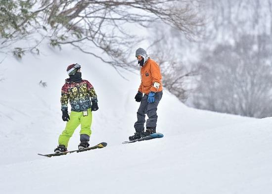 最高の雪質|ハチ・ハチ北スキー場のクチコミ画像1