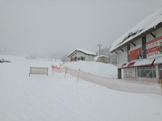 オープンからパウダーコンディション|赤倉観光リゾートスキー場のクチコミ画像