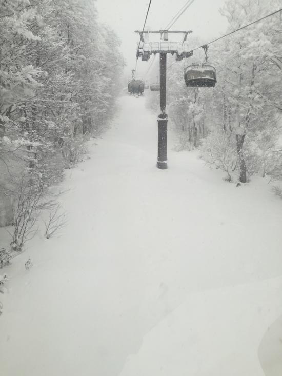 オープンからパウダーコンディション|赤倉観光リゾートスキー場のクチコミ画像2