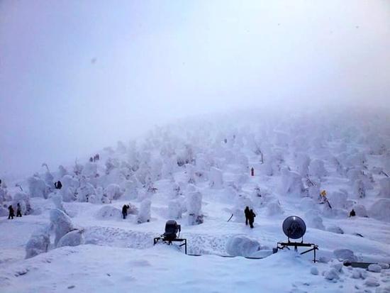 今年も樹氷が見たい!|蔵王温泉スキー場のクチコミ画像