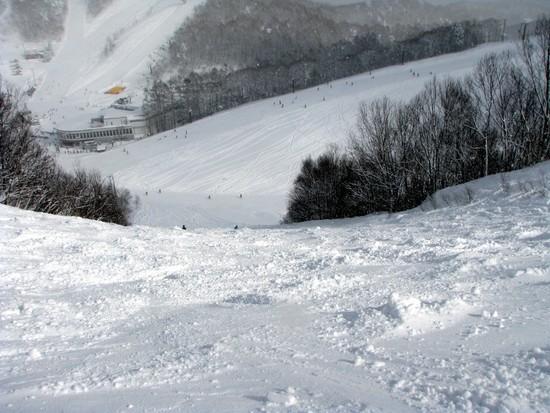 鹿島槍スポーツヴィレッジ|HAKUBAVALLEY 鹿島槍スキー場のクチコミ画像