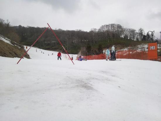 春ゲレンデ|めいほうスキー場のクチコミ画像
