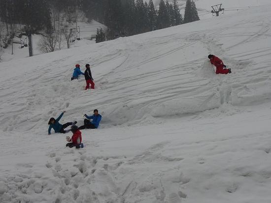 何度行ってもやっぱり良いスキー場ですね|松之山温泉スキー場のクチコミ画像3