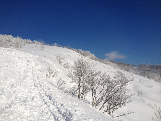 そろそろ雪の便りが、、、|スキージャム勝山のクチコミ画像