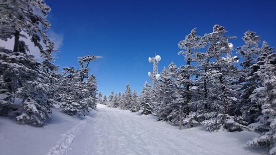 志賀高原 熊の湯スキー場のフォトギャラリー3