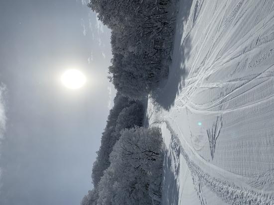今年は|会津高原南郷スキー場のクチコミ画像