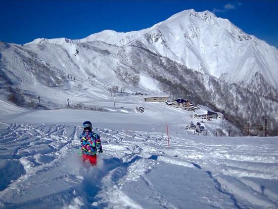 雪不足の今年ですがパウダーを狙って天神へ|谷川岳天神平スキー場のクチコミ画像