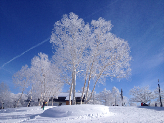 ボーダーとしては期待をやや下回る 野沢温泉スキー場のクチコミ画像