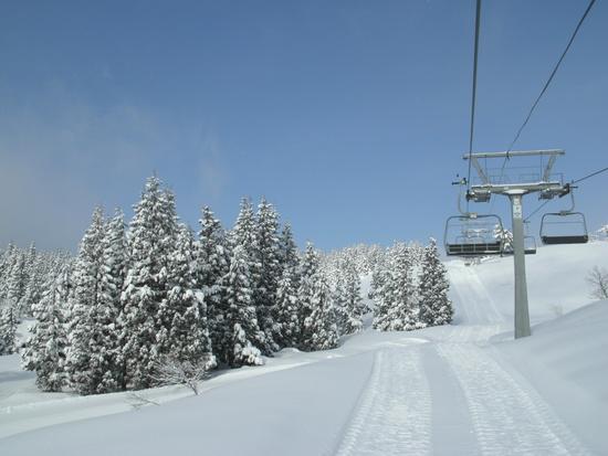 まだ全面滑走可能|上越国際スキー場のクチコミ画像