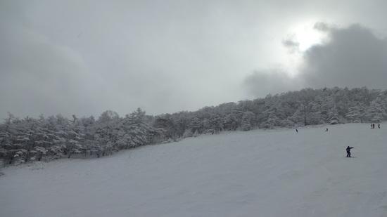 ゲレンデコンディション最高|丸沼高原スキー場のクチコミ画像