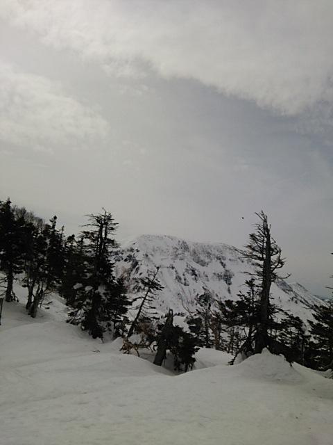 天気は最高!!|かぐらスキー場のクチコミ画像