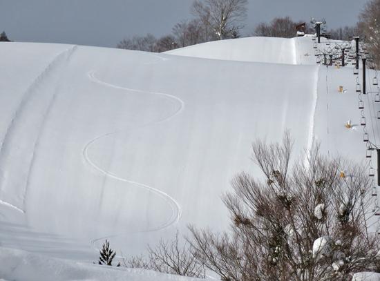 新雪を楽しみました。|会津高原だいくらスキー場のクチコミ画像1
