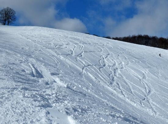 新雪を楽しみました。|会津高原だいくらスキー場のクチコミ画像3