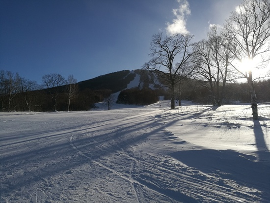雪たっぷり 安比高原スキー場のクチコミ画像