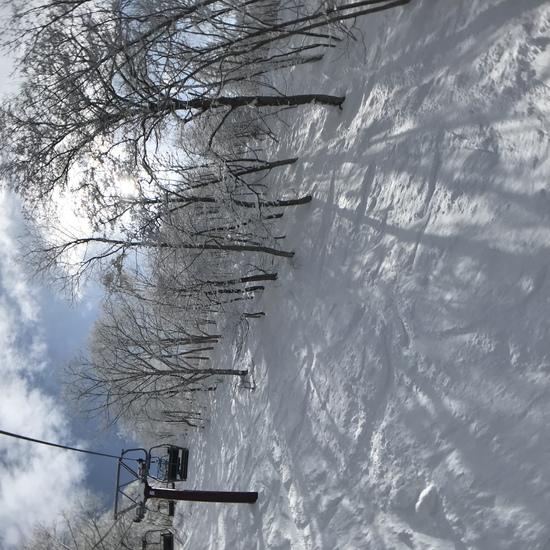 雪園地(snow land)|タングラムスキーサーカスのクチコミ画像