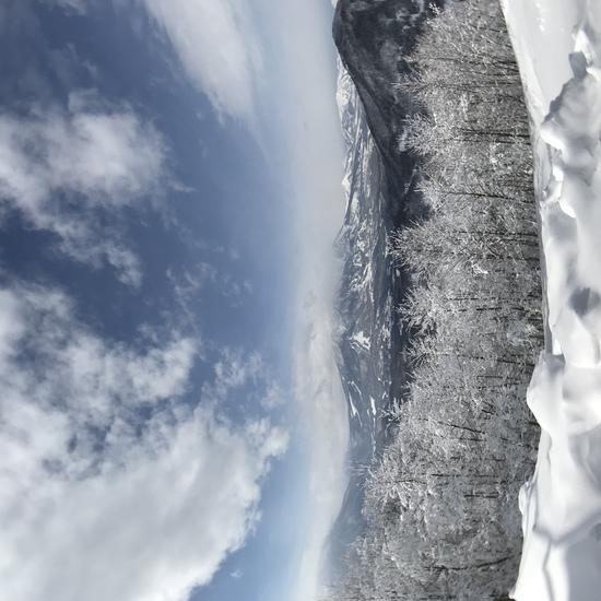 雪園地(snow land)|タングラムスキーサーカスのクチコミ画像2