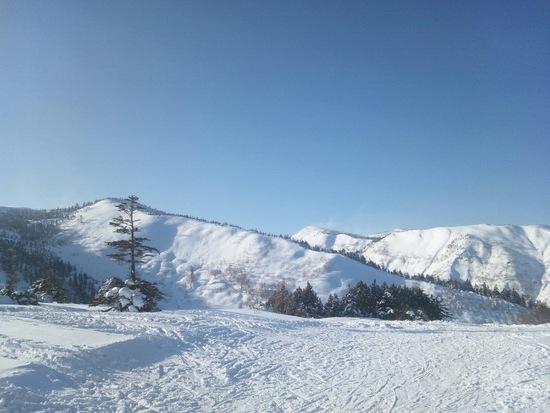 人が多かった|かぐらスキー場のクチコミ画像