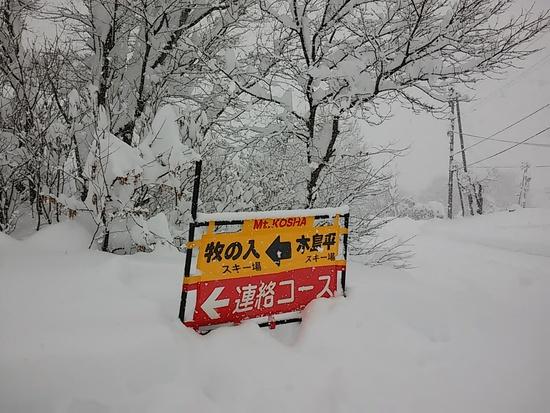 一面のノートラックバーンだった牧の入スノーパーク 北信州 木島平スキー場のクチコミ画像3