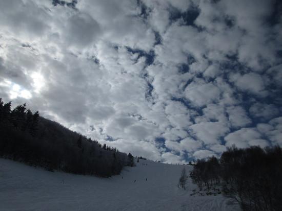 成人の日に…|しらかば2in1スキー場のクチコミ画像2