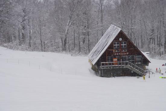 ふかふかパウダー|奥只見丸山スキー場のクチコミ画像2