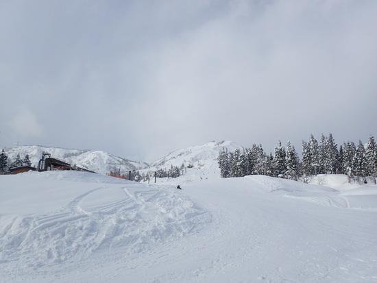 パウダー天国 須原スキー場のクチコミ画像