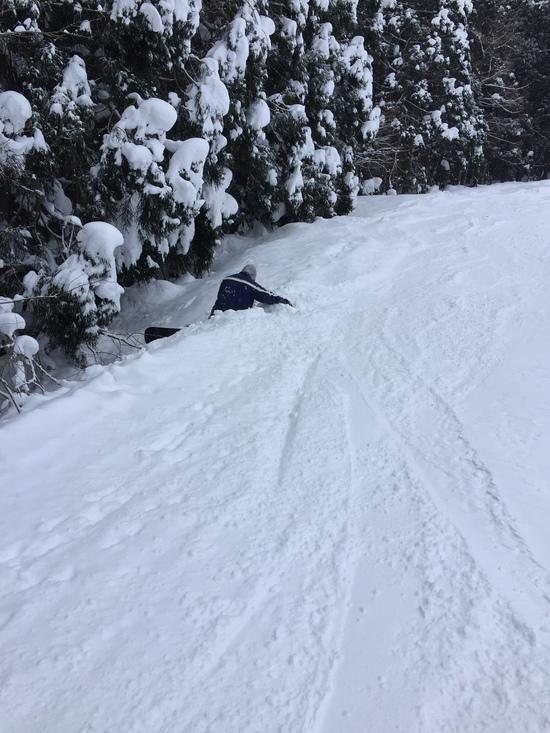 崖の下のポニョ?|白馬さのさかスキー場のクチコミ画像