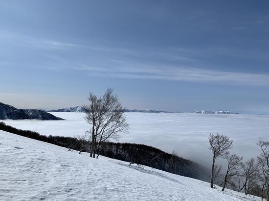 ジャム最高!|スキージャム勝山のクチコミ画像