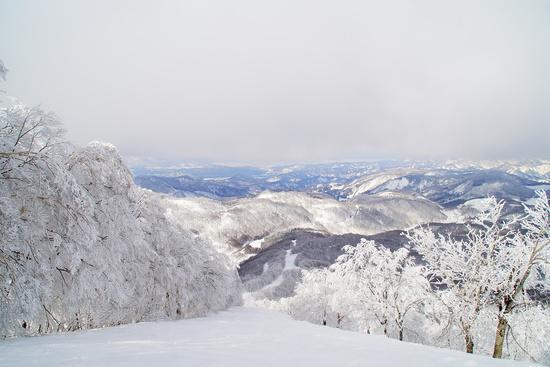 競争率高いです。|斑尾高原スキー場のクチコミ画像