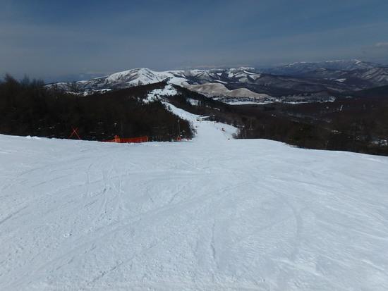 春スキーでも雪質がいい|しらかば2in1スキー場のクチコミ画像