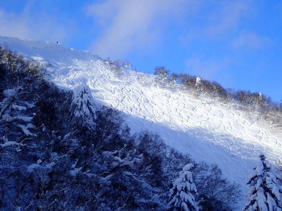 山頂のシュプール|富良野スキー場のクチコミ画像