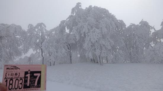 久しぶりに|斑尾高原スキー場のクチコミ画像2