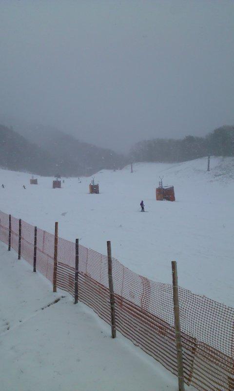 新雪でした。|治部坂高原スキー場のクチコミ画像2