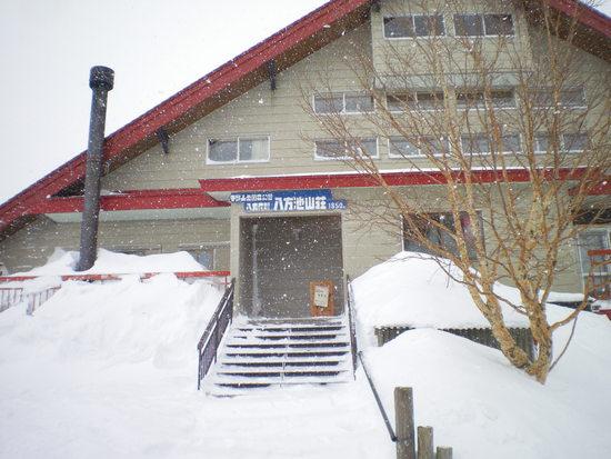 スキー場の規模では断トツです|白馬八方尾根スキー場のクチコミ画像