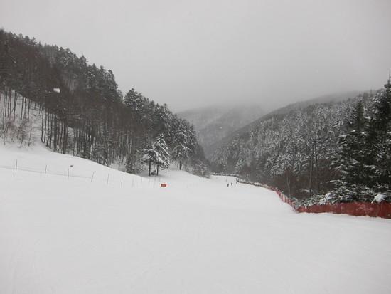 2014/12/20(土) 長野県 きそふくしまの速報|木曽福島スキー場のクチコミ画像1
