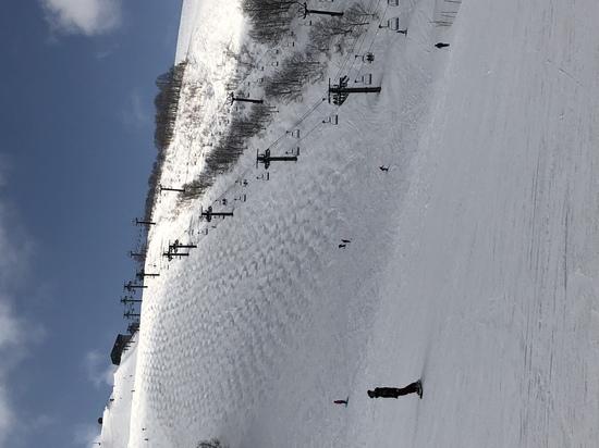 春の陽気|白馬八方尾根スキー場のクチコミ画像
