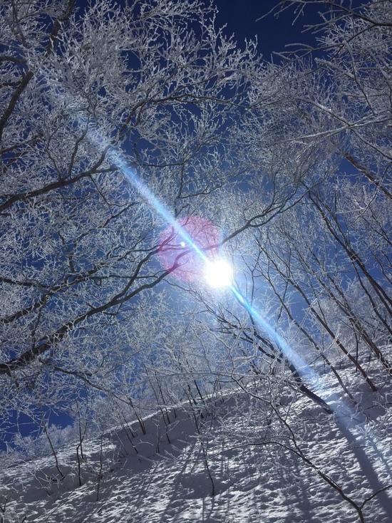 樹氷|会津高原たかつえスキー場のクチコミ画像1