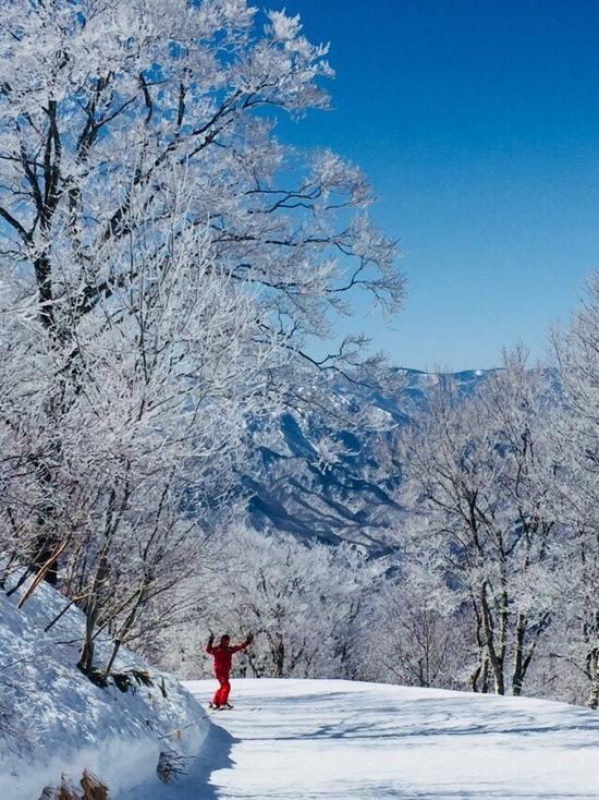 樹氷 会津高原たかつえスキー場のクチコミ画像2