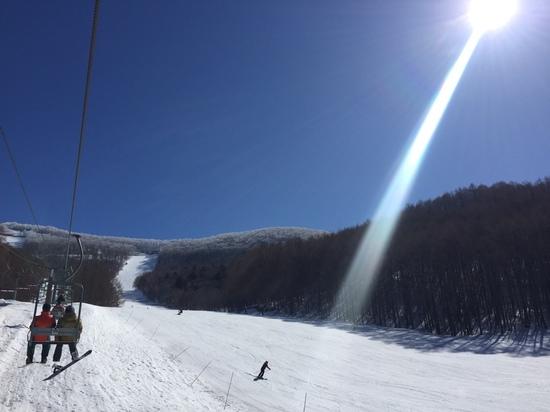 樹氷 会津高原たかつえスキー場のクチコミ画像3