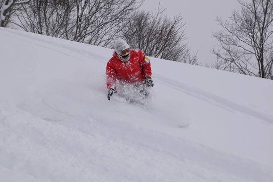 パウダーぱふぱふ|さかえ倶楽部スキー場のクチコミ画像