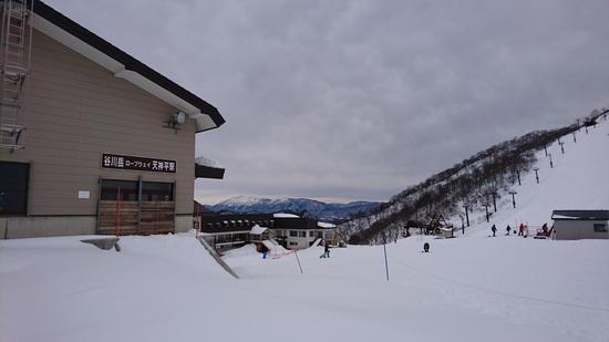 ロープウェイは原則往復1本|谷川岳天神平スキー場のクチコミ画像
