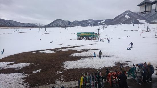 雪が!|栂池高原スキー場のクチコミ画像