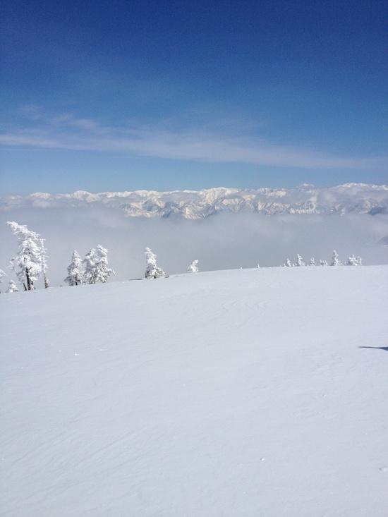 ピーカンパウダー|かぐらスキー場のクチコミ画像